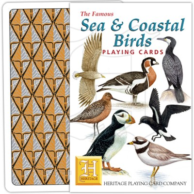 Sea & Coastal Birds