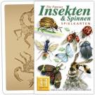 Insekten & Spinnen